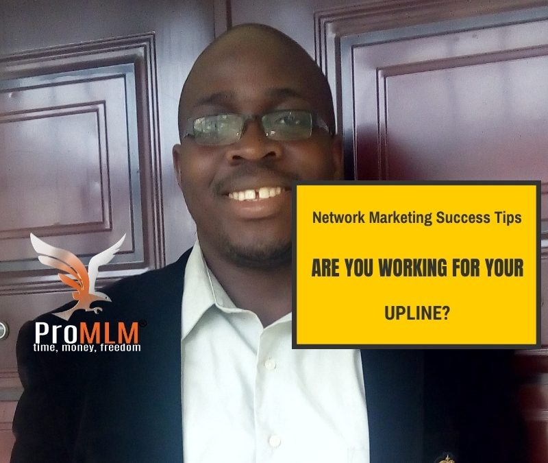 Network Marketing Success-Are You Working For Your Upline?