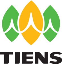 tiens top mlm in namibia