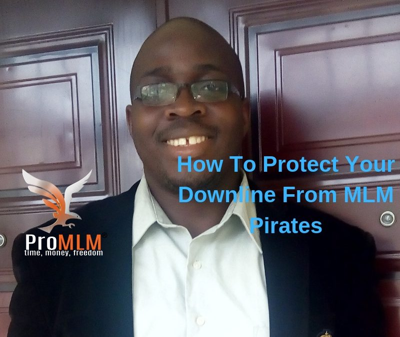 MLM Team Building Tips- Protecting Your Downline From MLM Pirates